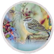 Spring Sparrow Round Beach Towel