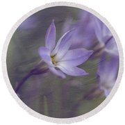 Spring Starflower Round Beach Towel