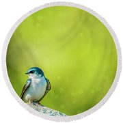 Spring Swallow Round Beach Towel