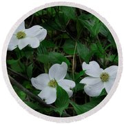 Round Beach Towel featuring the photograph Spring Time Dogwood by Mike Eingle