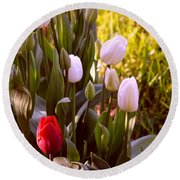 Round Beach Towel featuring the photograph Spring Time Tulips by Susanne Van Hulst