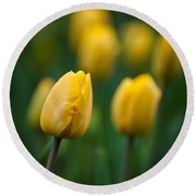 Spring Tulips Yellow Round Beach Towel