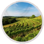 Round Beach Towel featuring the photograph Spring Vinyard by Davor Zerjav
