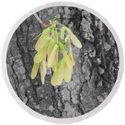 Round Beach Towel featuring the photograph Spring Whirligig by Colleen Cornelius