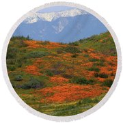 Round Beach Towel featuring the photograph Spring Wildflower Display At Diamond Lake In California by Jetson Nguyen