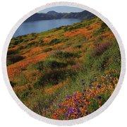 Spring Wildflower Season At Diamond Lake In California Round Beach Towel