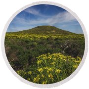 Spring Wildflowers Blooming In Malibu Round Beach Towel