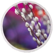 Spring Willow Branch Of White Furry Catkins Round Beach Towel