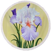 Springtime Iris Round Beach Towel by Jimmie Bartlett