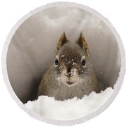 Squirrel In A Snow Tunnel Round Beach Towel