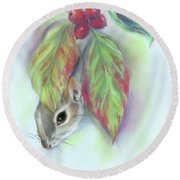 Squirrel In The Autumn Dogwood Round Beach Towel