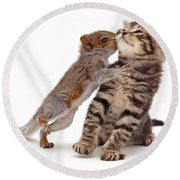 Squirrel Kiss Round Beach Towel