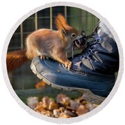 Squirrel On Boot  Round Beach Towel