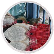 Squirrel Stealing Stuffing For A Nest Round Beach Towel
