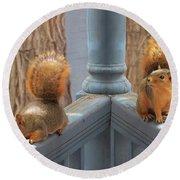 Squirrels Balancing On A Railing Round Beach Towel