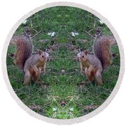 Squirrels With Question Mark Tails Round Beach Towel