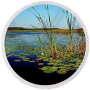 St. Mark's Lake Round Beach Towel