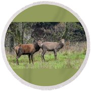 Stag And Doe  Round Beach Towel