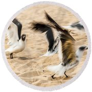 Stages Of Flight Round Beach Towel