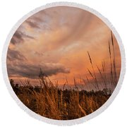 Stalking The Sky  Round Beach Towel by John Harding