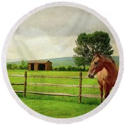 Round Beach Towel featuring the photograph Stallion At Fence by Diana Angstadt