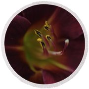 Stamen Of Day Lily Round Beach Towel