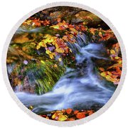 Standing In Motion - Leaves On A Rock 007 Round Beach Towel