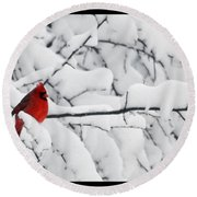 Round Beach Towel featuring the photograph Standing Out by Shari Jardina