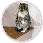 Stanzie Cat Round Beach Towel