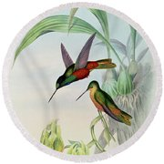 Star Fronted Hummingbird Round Beach Towel by John Gould