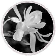 Star Magnolia Flower Black And White Round Beach Towel