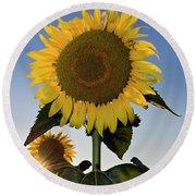 Starlight And Sunflowers - D008092 Round Beach Towel