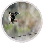 Starling Attack Round Beach Towel
