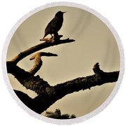 Round Beach Towel featuring the photograph Starling by Karen Horn