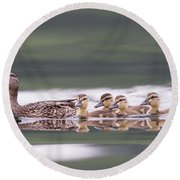 Stay In Line... Round Beach Towel