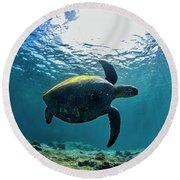 Turtle Turn Round Beach Towel