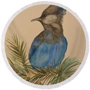 Round Beach Towel featuring the painting Stellar Jay - Summer #2 by Maria Urso