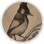 Stellar's Jay - Charcoal Round Beach Towel