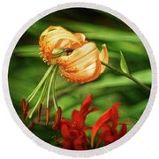 Steroid Stamens Round Beach Towel by Cameron Wood
