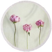 Still Life Of Dried Peonies With Texture Overlay Round Beach Towel