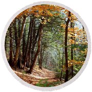 Stillness Round Beach Towel by Elfriede Fulda