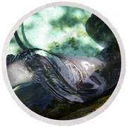 Round Beach Towel featuring the photograph Stingray Wave by Francesca Mackenney