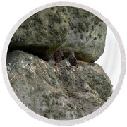 Round Beach Towel featuring the photograph Stonehenge Birds by Francesca Mackenney