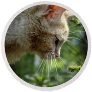 Stop And Smell The Flowers 9433a Round Beach Towel