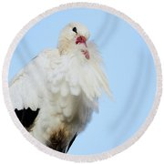 Round Beach Towel featuring the photograph Storck Closeup by Nick Biemans