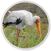 Round Beach Towel featuring the photograph Stork by Betty-Anne McDonald