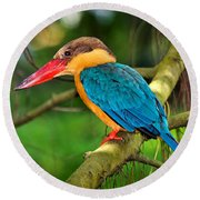 Stork-billed Kingfisher Round Beach Towel