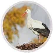 Round Beach Towel featuring the photograph Stork On A Nest, Trees In The Background by Nick Biemans