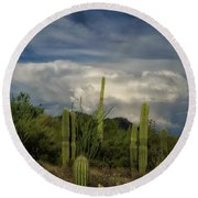 Round Beach Towel featuring the photograph Storm A Brewin' by Elaine Malott