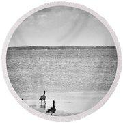 Canada Geese - Currituck Sound Round Beach Towel
